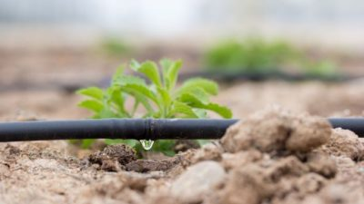 Drip Irrigation Systems Market