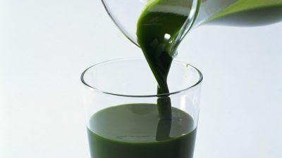 Chlorophyll Extract Market