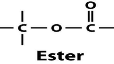 Esters Market