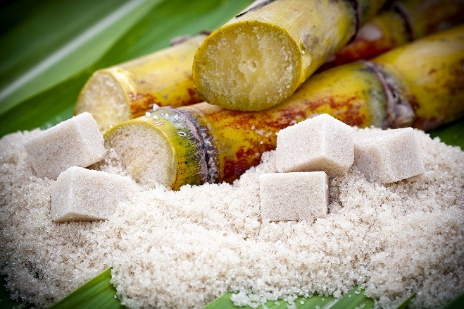 Global Alcohol, and Sugar/Starch Enzymes Market Analysis, Drivers,