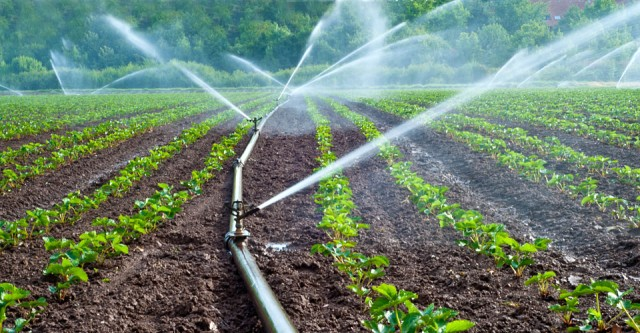 Global Micro Irrigation System Market Trends, Applications, Analysis,