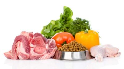 Pet Food Ingredients Market