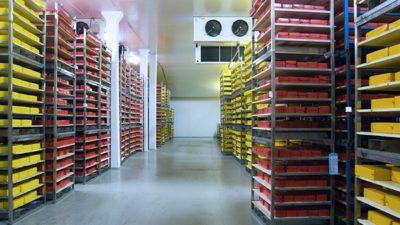Cold Storage Market