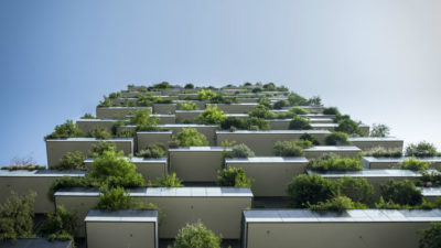 Green Building Material Market