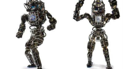 Humanoid Robot Market