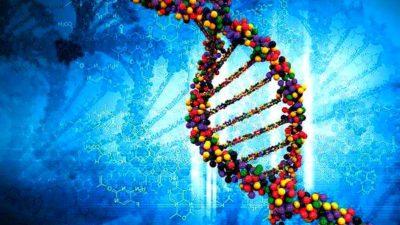 Genome Engineering Market