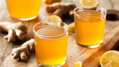 Probiotic Ingredients Market
