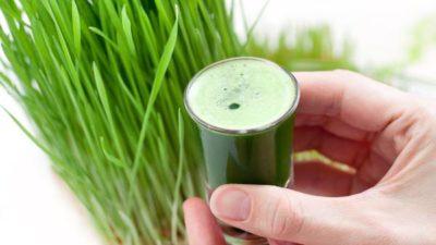 Wheatgrass Products Market