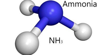 Ammonia Market