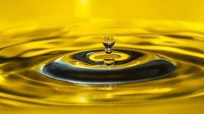 Bio-lubricants Market