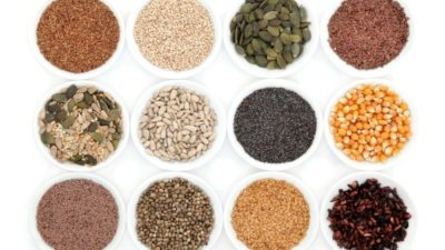Commercial Seeds Market