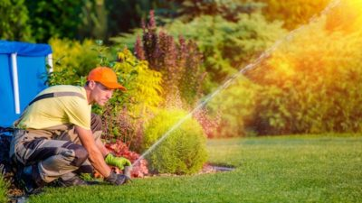 Irrigation Controllers Market