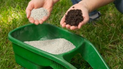 Nitrogenous Fertilizers Market