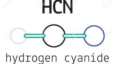 Hydrogen Cyanide Market