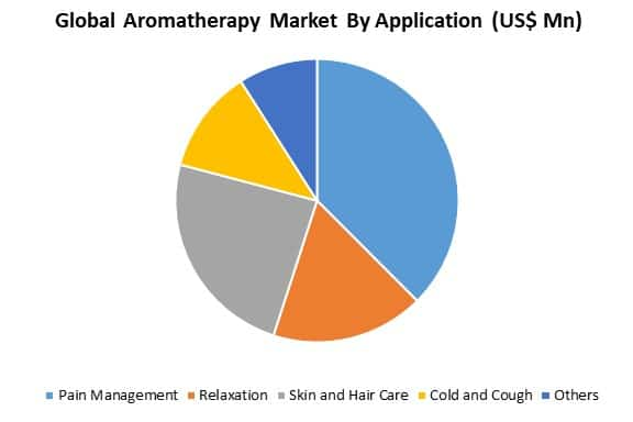 global aromatherapy market analysis by application