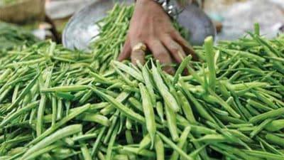 Guar Gum Market