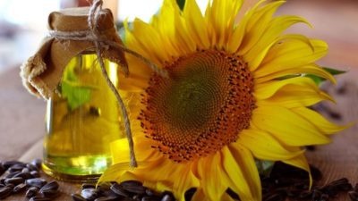 Sunflower Oil Market