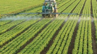 Biorational Pesticides Market