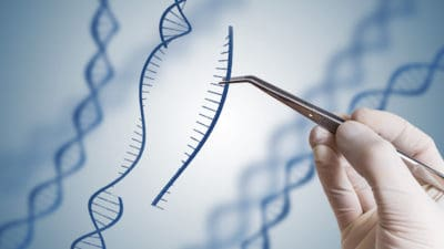 CRISPR Technology Market