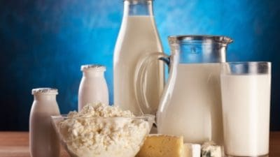 Lactose-free Dairy Products Market