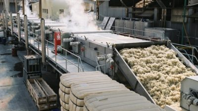 Cotton Processing Market