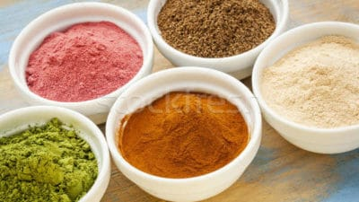 Fruit Powders Market