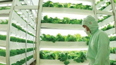 Indoor Farming Technology Market