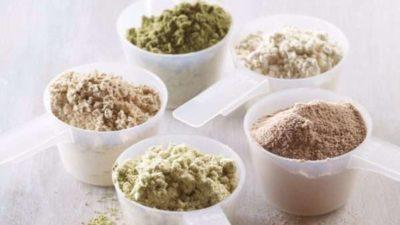 Protein Hydrolysate Market