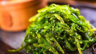 Seaweed Market