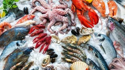 Sustainable Seafood Market
