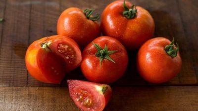Tomato Seeds Market