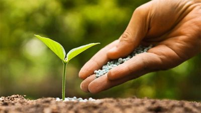 Fertilizer Catalysts Market