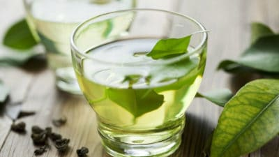 Green Tea Extract Market