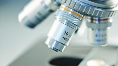 Mycotoxin Testing Market