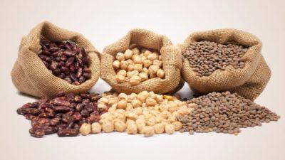 Pulses Ingredients Market