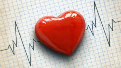 Artificial Cardiac Valves Market