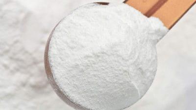 Calcium Phosphates Market