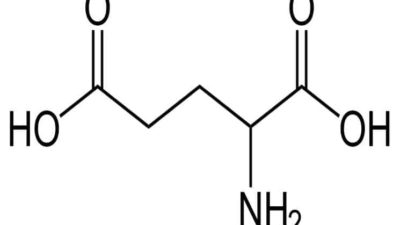 Glutamic Acid Market