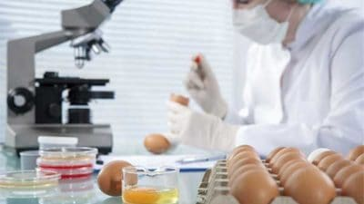 Meat Speciation Testing Market