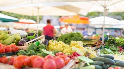 Organic Food Preservatives Market