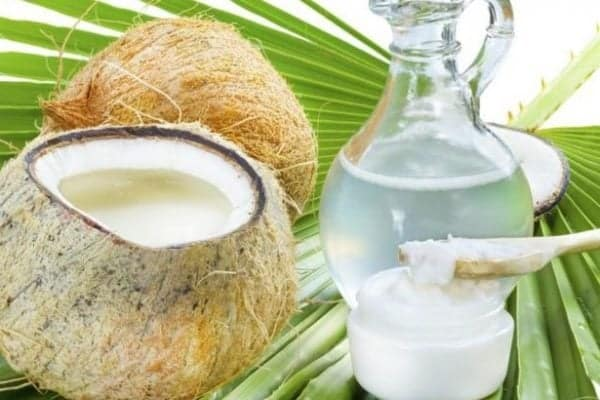 Global Packaged Coconut Water Market Size, Share | Industry Forecast 2028