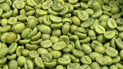 Green Coffee Bean Extract Market