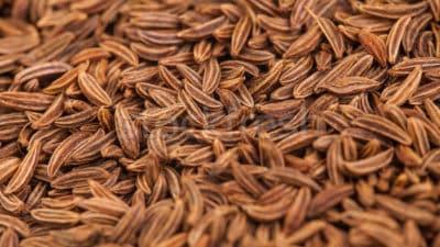 Caraway Seed Market