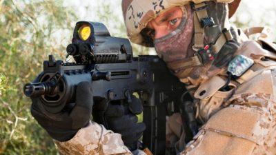 Light Weapons Market