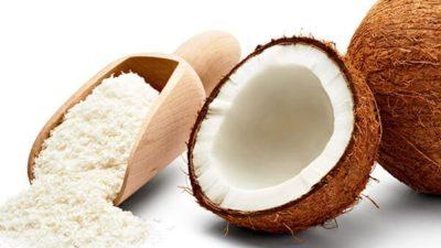 Coconut Milk Powder Market