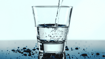 Liquid Feed Supplements Market
