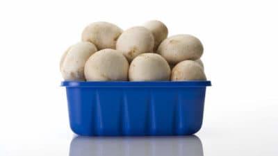 Mushroom Packaging Market