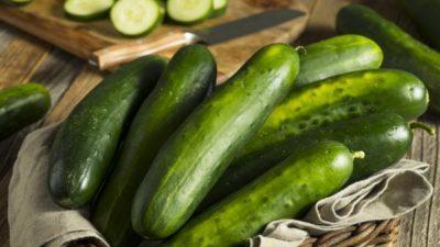 Cucumber Seed Market