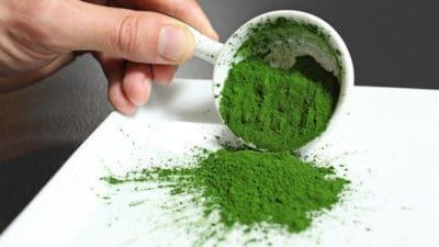 Algal Proteins Market