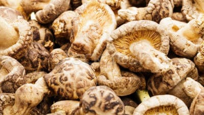 Dried Mushroom Market